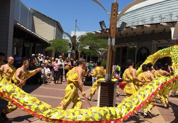 Chinese artists at festival in South Africa:null