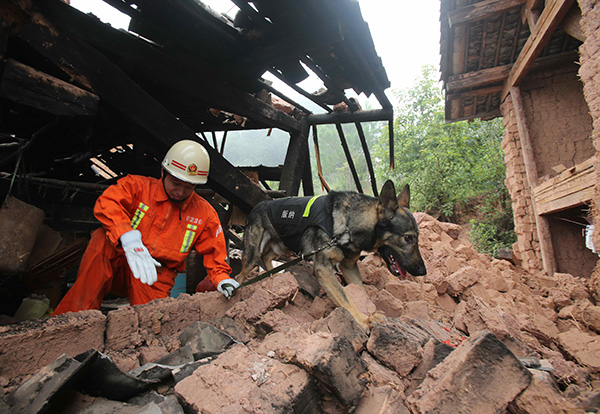 Premier orders immediate response to Yunnan quake:null
