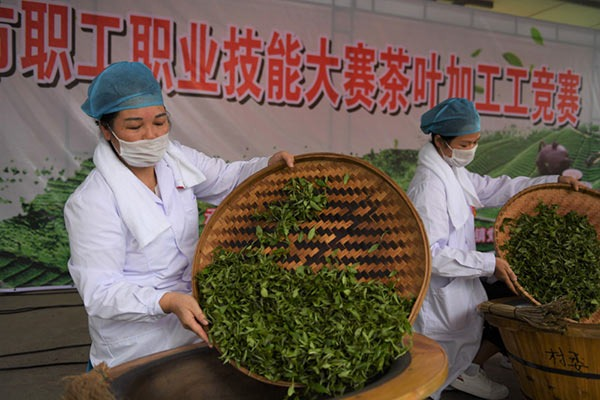 Tea stir-frying competition held in Xingye county of Yulin, China's Guangxi:null