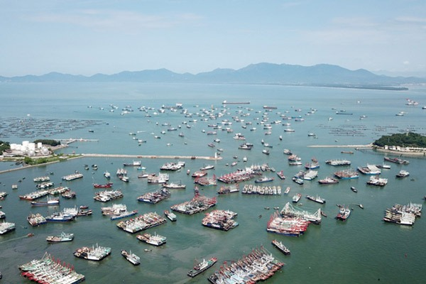 Festival held to mark launching of new fishing season in Yangjiang, China's Guangdong:null