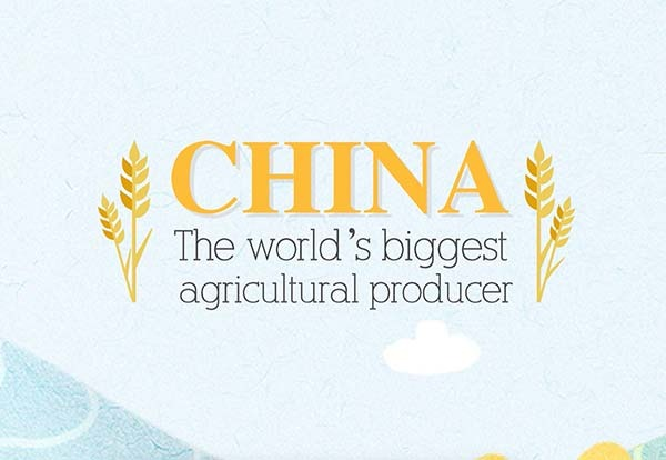 Chinese Terminology: Agriculture in the past 70 years:null