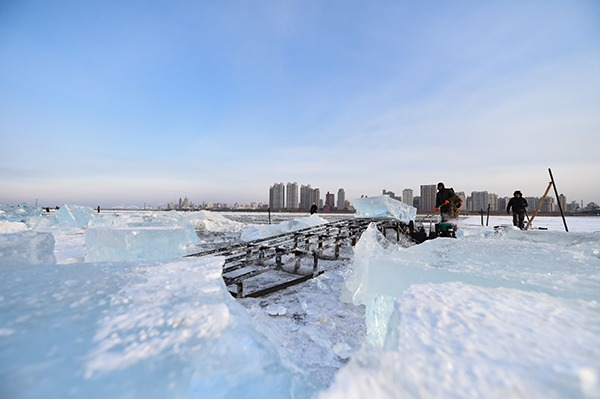 Ice cubes collected from frozen Songhua River to be used in city decoration in Harbin:null