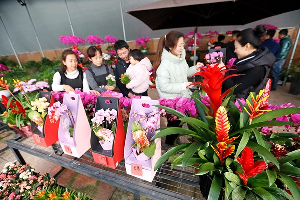 Flowers, plants boost rural revitalization in E China's Shandong:null