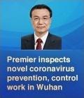 Premier inspects novel coronavirus prevention, control work in Wuhan:5