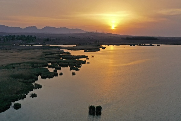 Scenery of Tianhu National Wetland Park in Ningxia:null