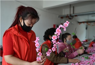 China to bolster flexible employment:1