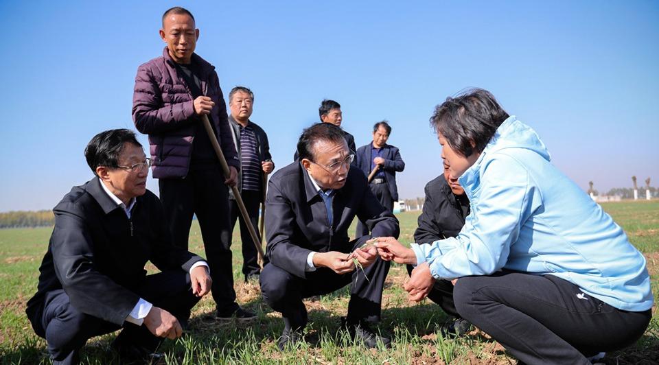 Premier stresses livelihood, urbanization, modern agriculture in Henan:0