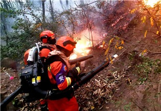 State Council issues national emergency plan for forest, grassland fires:1