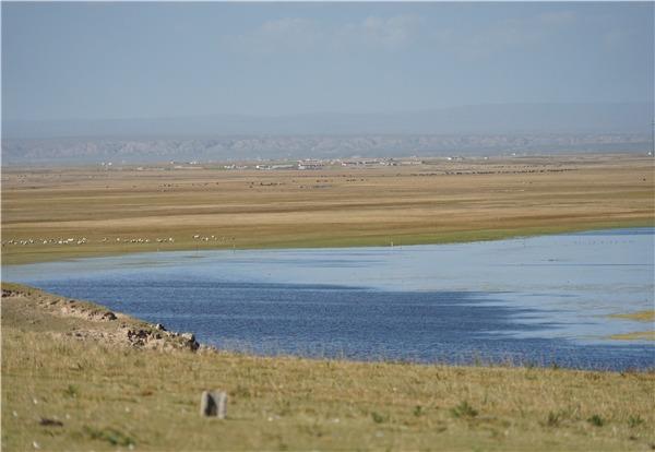 Diplomats praise ecological protection of China's Qinghai Lake:0