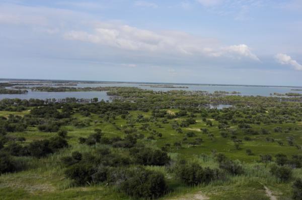 Bringing Jilin S Wetlands Back To Life