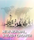 New normal, steady growth